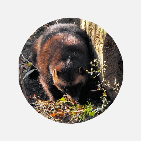 """Wolverine Browsing 3.5"""" Button"""