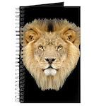 African Lion Journal