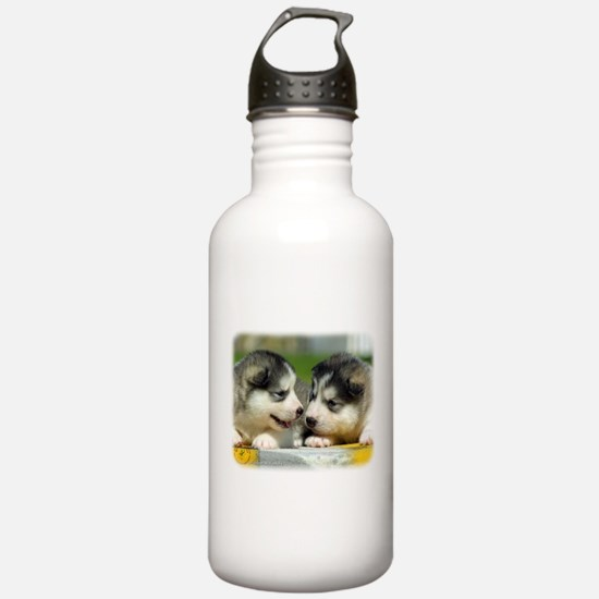 Alaskan Malamute puppies 9R034D-348 Sports Water Bottle