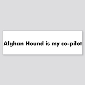 Afghan Hound is my co-pilot Bumper Sticker