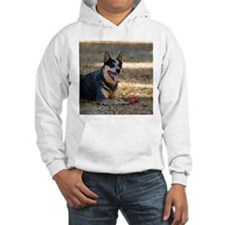 Nomi Hooded Sweatshirt