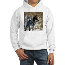 Blue - Hooded Sweatshirt