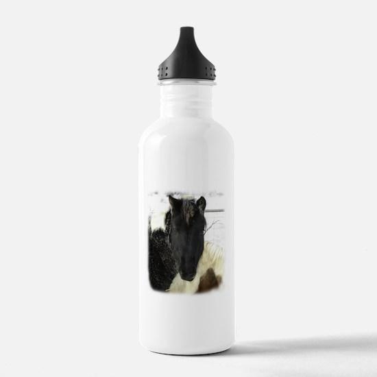 4-H Horse Water Bottle