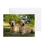 Two Yellow Lab Greeting Card
