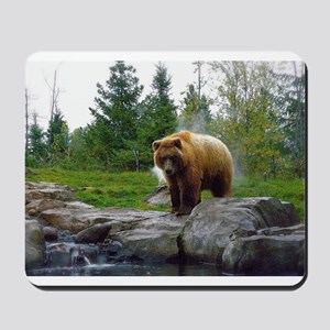 Grizzly Mousepad