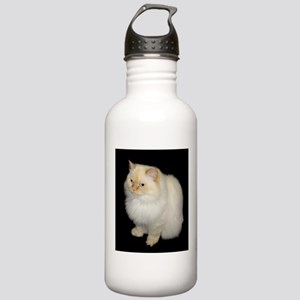 Zeus the White Himalayan Cat Stainless Water Bottl