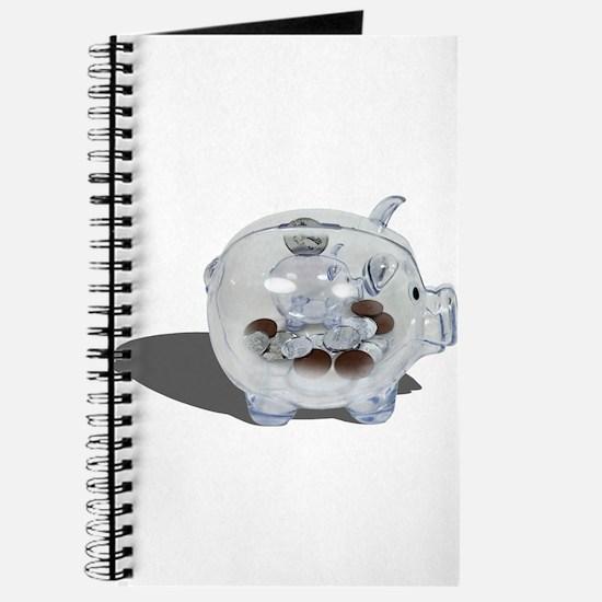 Nickel and Dime Savings Journal