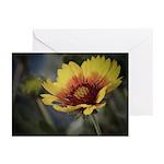 Spring Flower Greeting Cards (Pk of 10)