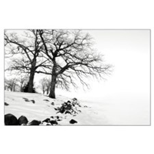 Winter Trees Large Poster