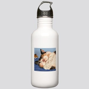 Catnapping Stainless Water Bottle 1.0L
