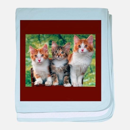 3 Cats baby blanket