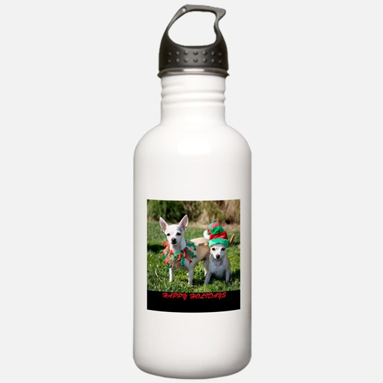 Chihuahuas Water Bottle