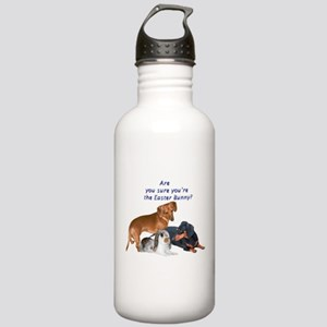 are you the Easter Bunny Dogs Stainless Water Bott