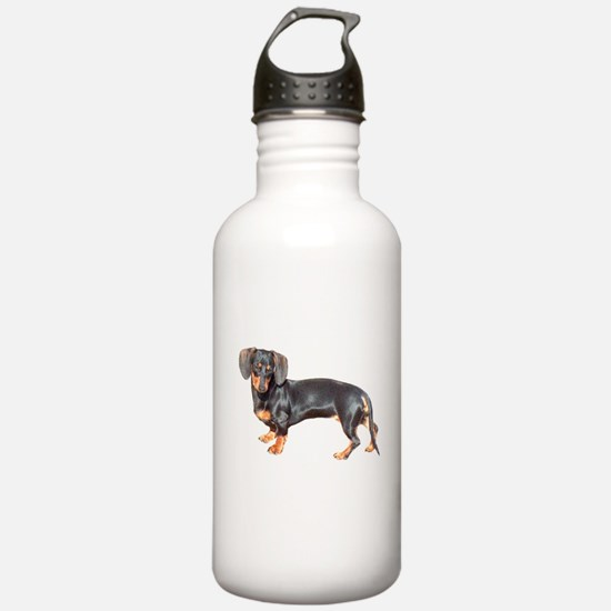 Unique Holiday and occasions Water Bottle