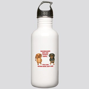 Potato Chips Stainless Water Bottle 1.0L