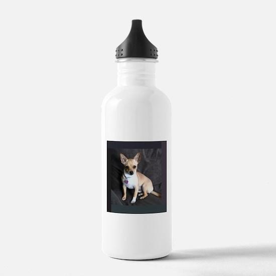 Fawn Water Bottle