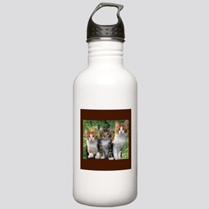 3 Cats Stainless Water Bottle 1.0L