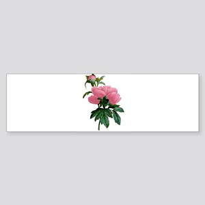 PINK PEONIES Sticker (Bumper)