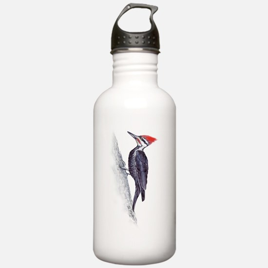 handsome pileated woodpecker Water Bottle