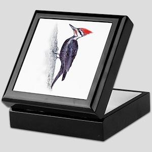 handsome pileated woodpecker Keepsake Box
