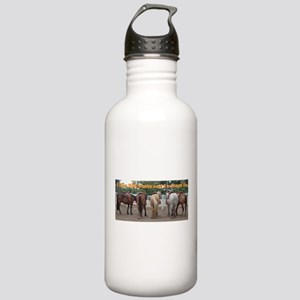 Big Butts Stainless Water Bottle 1.0L