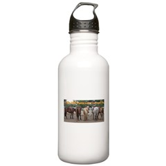 Big Butts Water Bottle
