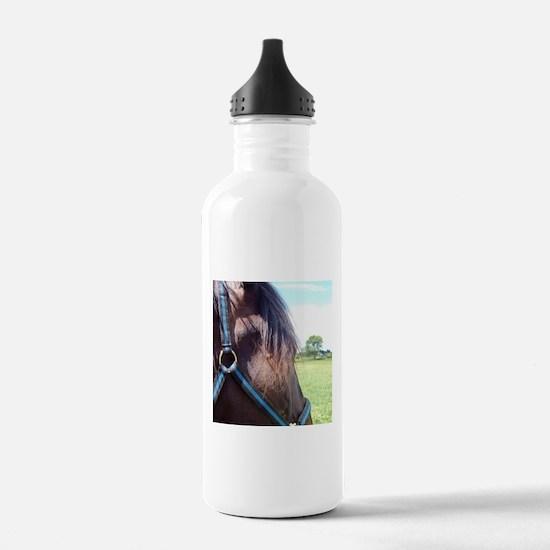 MAYBE Water Bottle