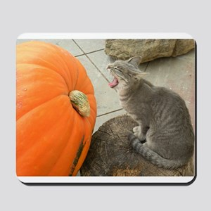 Cat Dreaming of Pumpkin Pie Mousepad