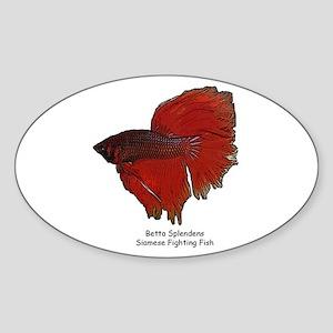 Red Betta Splendens -Siamese Oval Sticker