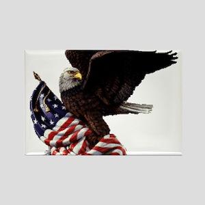 Eagle's America Rectangle Magnet