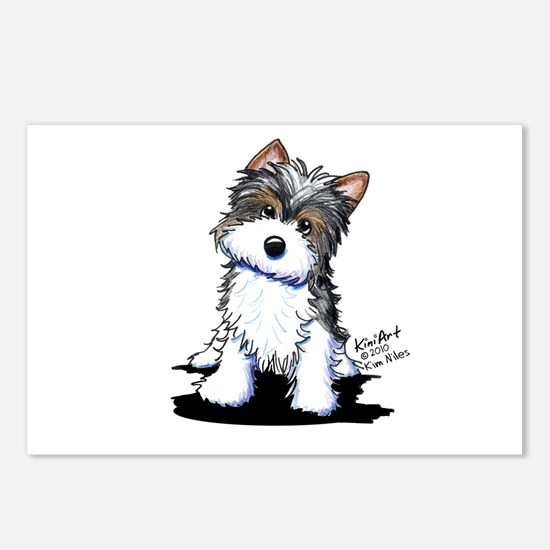 Biewer Yorkie Puppy Postcards (Package of 8)
