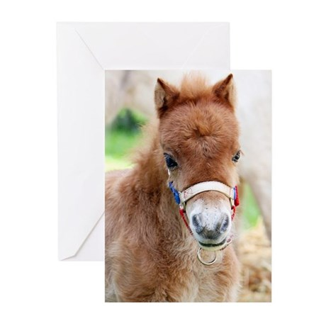 Joy Greeting Cards (Pk of 10)