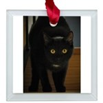 black cat on the stairs Square Glass Ornament