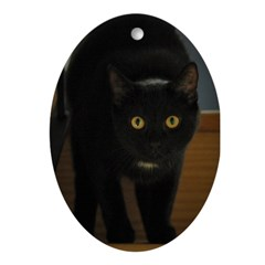 black cat on the stairs Oval Ornament