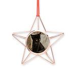 Little Black Kitten Copper Star Ornament