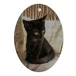 Little Black Kitten Oval Ornament