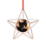 Mischief Kitten Copper Star Ornament
