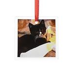 Mischief Kitten Square Glass Ornament