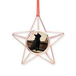 Piano Kitty Copper Star Ornament