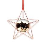 Catnap Copper Star Ornament