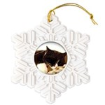 Catnap Snowflake Ornament
