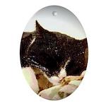 Catnap Oval Ornament