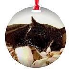 Catnap Round Ornament