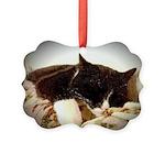 Catnap Picture Ornament