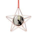 Kitty in Window pt. 5 Copper Star Ornament