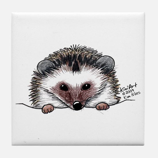 Pocket Hedgehog Tile Coaster