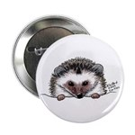 Pocket Hedgehog 2.25