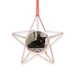 Sleepy Kitty Copper Star Ornament