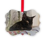 Sleepy Kitty Picture Ornament