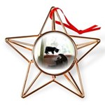 Avzer and Angel Copper Star Ornament